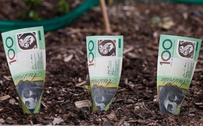 Federal Budget growing money